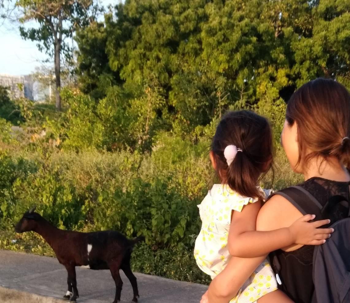 Kei&Annaのフィリピン親子留学体験談